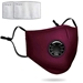 CLOTH FACE MASK W/RESPIRATOR  - SSRM184